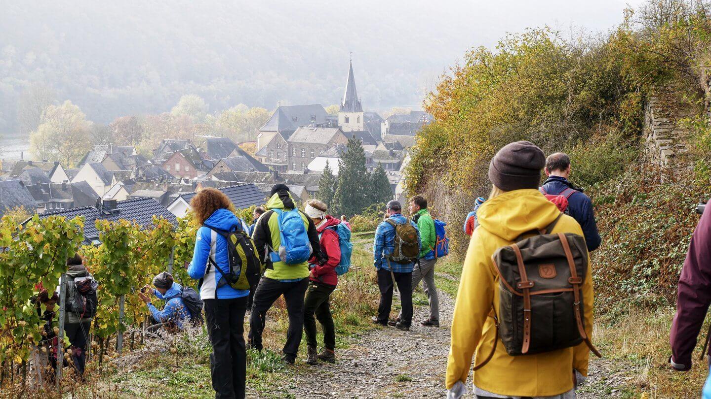 Für Outdoor-Fans und Feinschmecker: Wandern auf dem Moselsteig